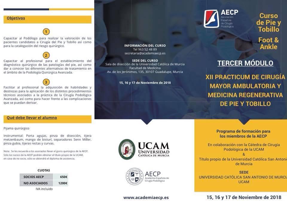 XII Practicum de cirugía mayor ambulatoria y medicina regenerativa de pie y tobillo